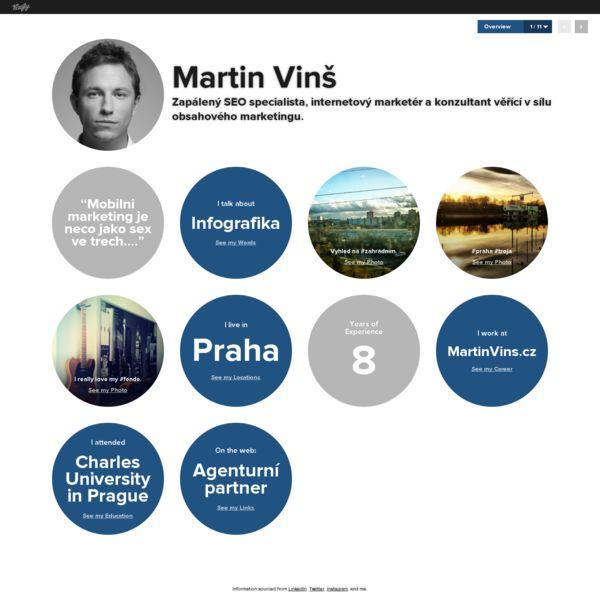 Moje vizitka ve Vizify.com: Martin Vinš