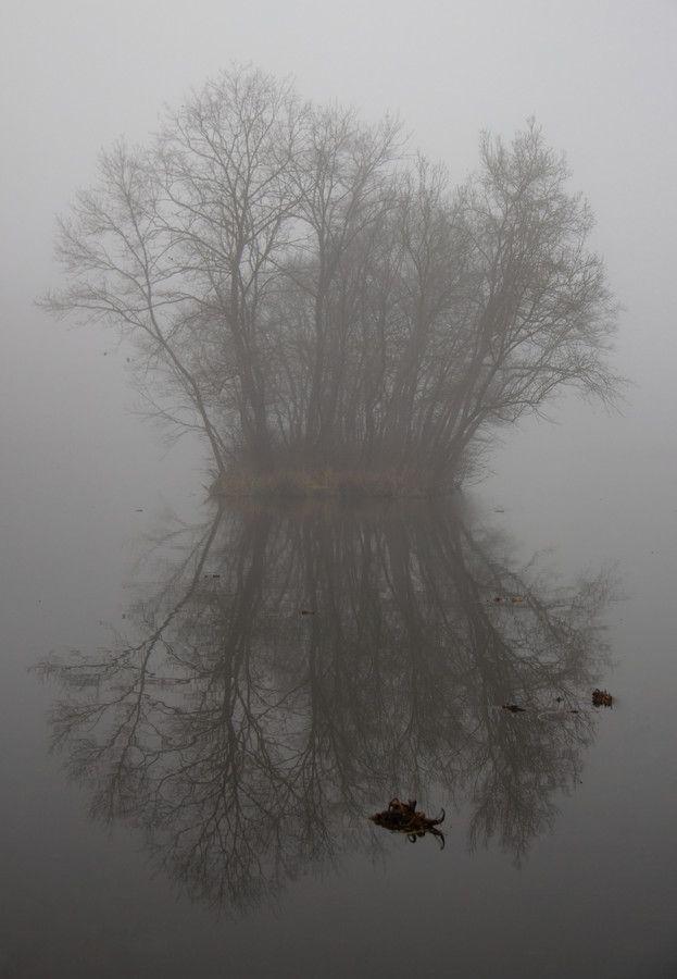 Misty Symmetry by Köles Mihály on 500px