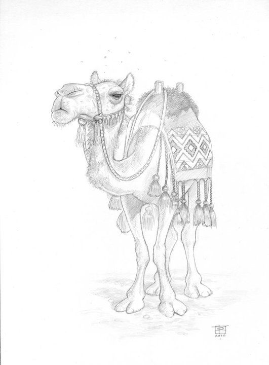 discworld coloring pages | 49 best Paul Kidby images on Pinterest | Terry pratchett ...