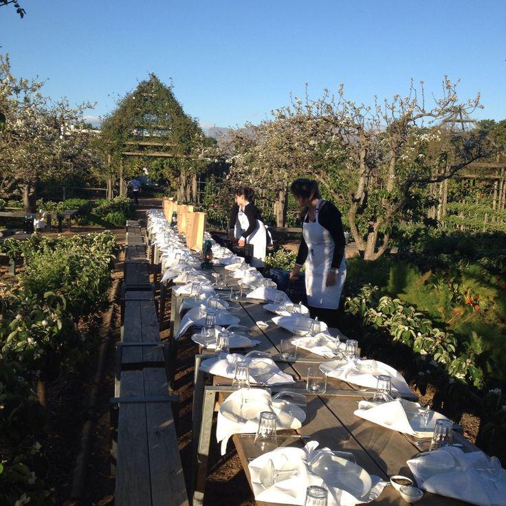 Kitchen Garden At Babylonstoren Farm South Africa