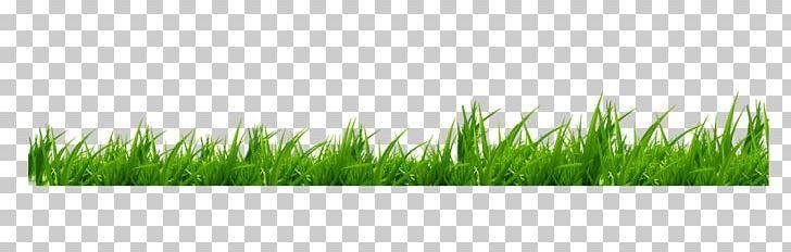 Icon Png Artificial Grass Cartoon Grass Creative Creative Grass Defocus Aberration Cartoon Grass Artificial Plants Metal Garden Art