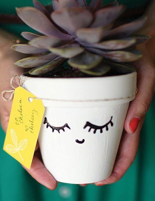 vaso de planta pequeno com suculenta e carinha, vaso de plantas divertido