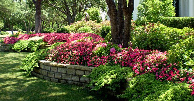 Texas Landscape Design Frisco Plano Landscape
