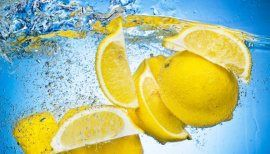 """So why should we freeze lemons? """"A new study has shown for the first time how limonoids, natural compounds present in lemons and other citrus fruit, impede both ER+ and ER- breast cancer cell growth."""