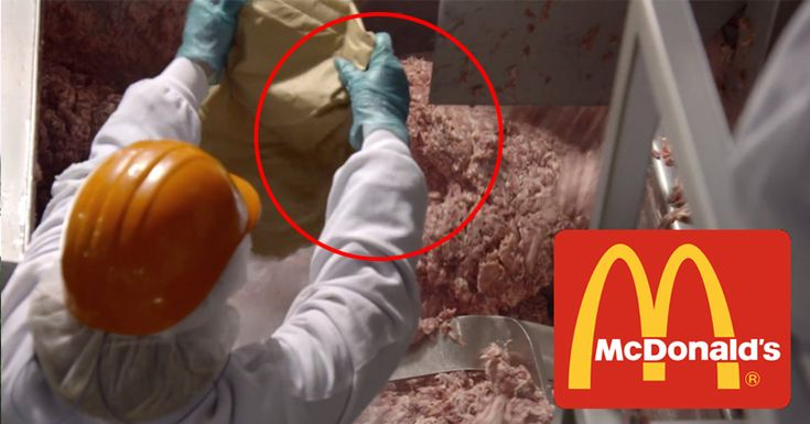 "From Mercola.com. What Happens to Your Body When You Eat a McDonald's Hamburger? By Dr. Mercola When talking about fast food giants, nothing can be bigger – and more infamous – than McDonald's. Those two ""golden arches"" sign are so abundant and so well-known all over the world, that some...More"