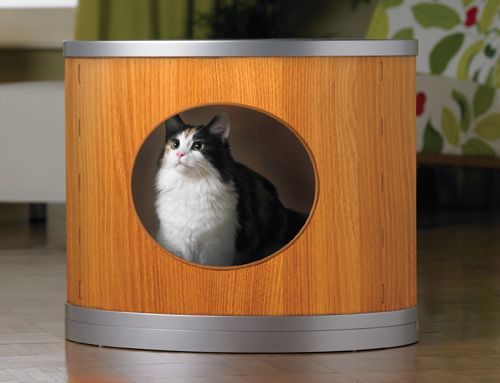 Lovely top Entry Cat Box