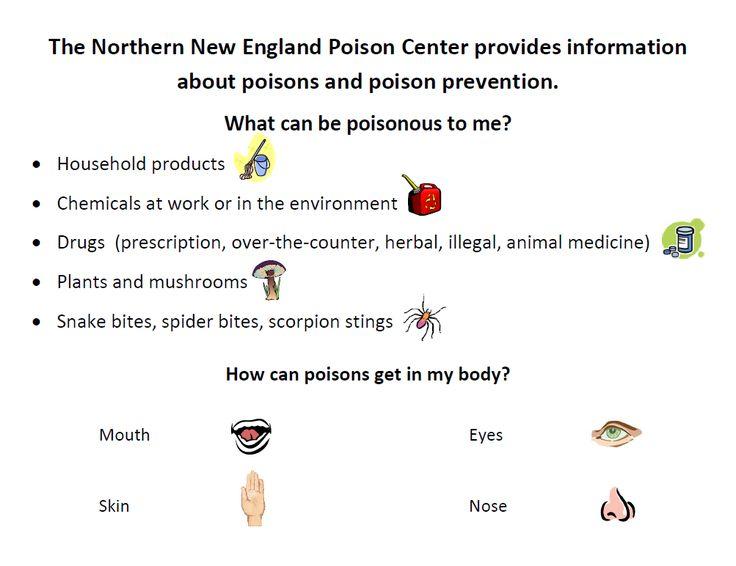 12+ New england animal medical center ideas