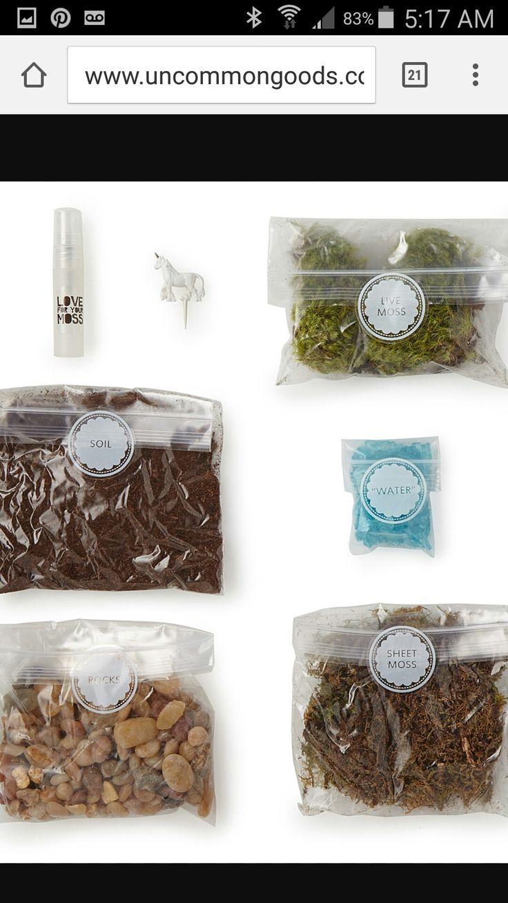 Unicorn terrarium supplies