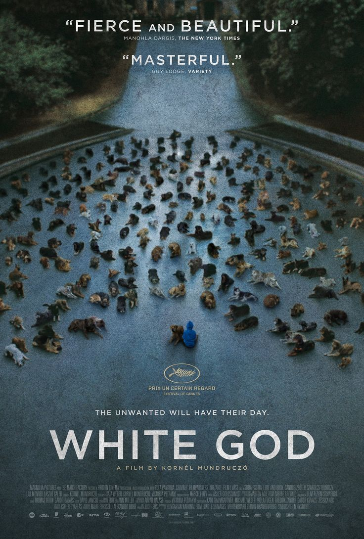 """White God"" #Sundance This is a great movie, so many great actor doggies! The hard-to-watch scenes don't last too long. The ending makes it worth it."