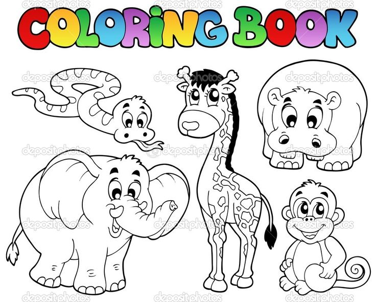 25 melhores ideias de animais africanos no pinterest o - Zoo animali da colorare ...