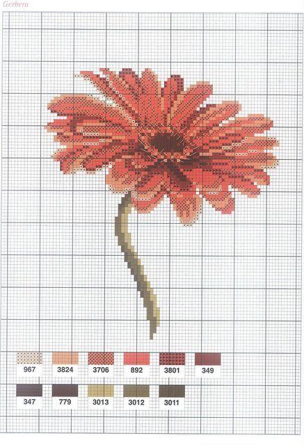 0 point de croix grille et couleurs de fils gerbera fleur