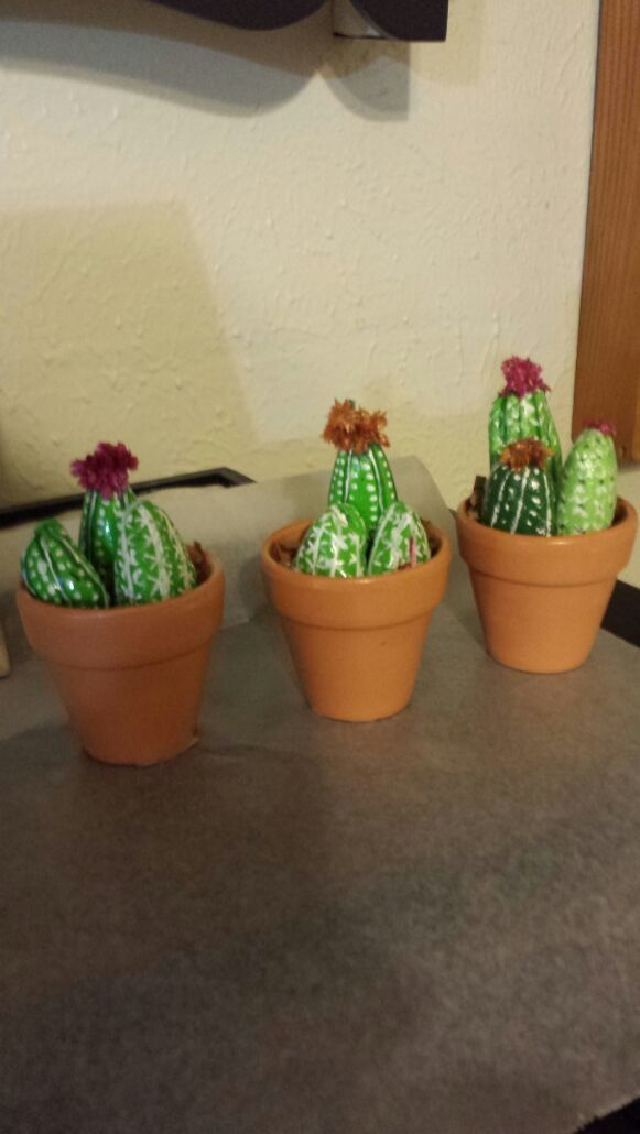 Set Of 3Beautiful Rock Cactuses Hand Painted And They Have A Protective  Clear Coat. Best