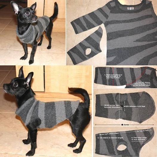 It's getting cold now, keep warm, everyone ! And take good care of your pets. Here is a nice idea of making a dog or cat sweater using old sweatshirt. It's very easy. Please check the link below for full tutorial... Voknits -- DIY recycled-dog-sweater DIY pet bed from old shirt :   DIY pet-bed-from-old-shirt-sweater