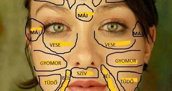 A testünk egyes szerveinek megbetegedéseiaz arcon is világosan megjelennek, csak nem mindenki tudja ezt olvasni. A régi kínaiak egy arctérképet használtak a diagnosztizálására, amit ha elmentesz, …