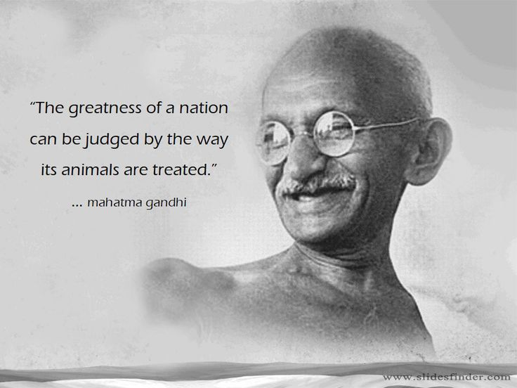 Good Morning Quotes By Mahatma Gandhi : Best images about mahatma gandhi motivational and