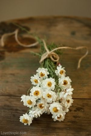Simple Daisy Bouquet flowers pretty simple bouquet daisy
