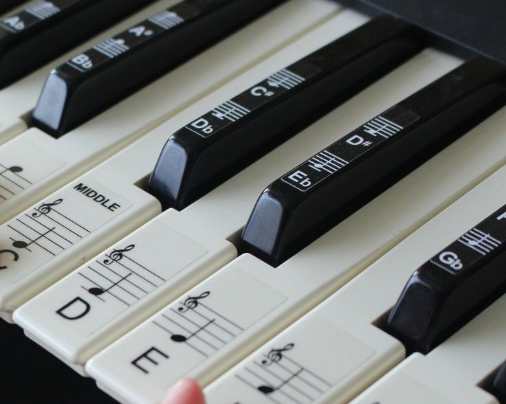 Keyboard or Piano Stickers Up to 88 Key Set for The Black and White Keys | eBay