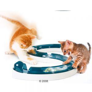 kissoille
