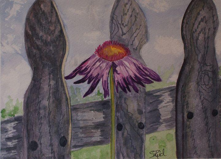 Fence - Sherry Reid | Paintings & Prints, Landscapes & Nature, Fields, Wildflower & Flower Fields | ArtPal
