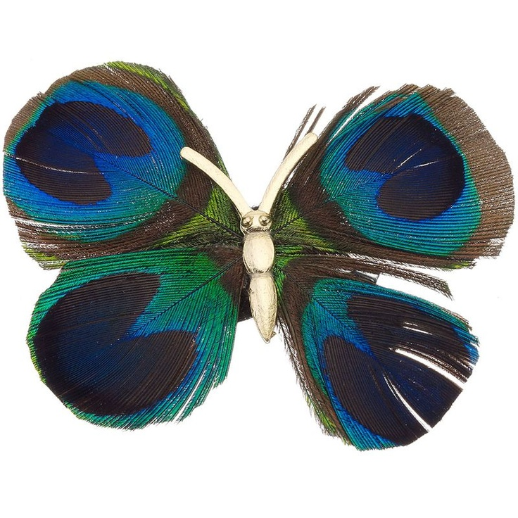 Accessorize : Presilha Peacock Feather Butterfly