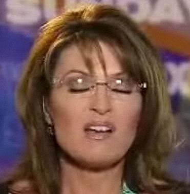 Sarah Palin is hot for big sticks