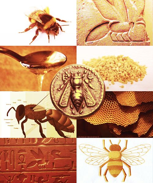 17 Best Mythology Egyptian Images On Pinterest Egyptian