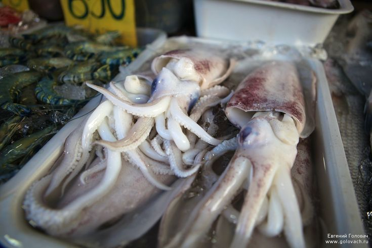 Рыбный развал морских цыган. Район Раваи, Пхукет. Тайланд. - Designer Golovach