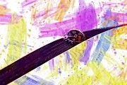 "New artwork for sale! - "" Ladybug Grass Insect Worm Green  by PixBreak Art "" - http://ift.tt/2tgqukt"
