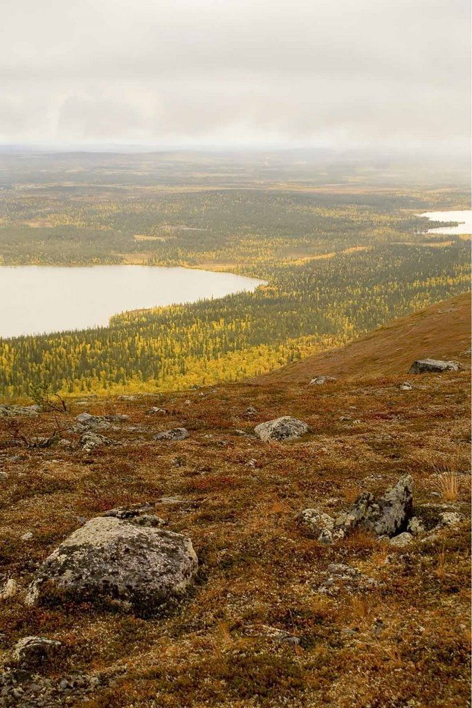 'Hetta is the ideal gateway for the Pallas-Yllästunturi National Park – a glorious mountain plateau of primeval, boreal forest and bare fells which begins just south of the village and reaches down to Kittilä in the south; it's one of Finnish Lapland's most enjoyable expanses of unspoilt wilderness and draws nature-lovers from across the country.' Lapland: the Bradt Guide; www.bradtguides.com