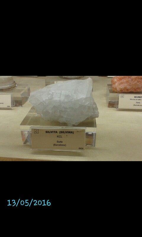 SILVITA  -Color de la superficie: incoloro o blanco -Color de la raya: blanca -Brillo: vítreo -Dureza: 2 -Densidad: 2 -Exfoliación: perfecta -Fractura: concoidal -Tenacidad: flexible -Diafanidad: transparente -Ambiente de formación: 1. Como precipitado de aguas marinas en salinas. 2. Como producto de sublimación en áreas volcánias. 3. Interestratificado con rocas sedimentarias de tipo evaporítico. -Aplicaciones: fabricación de fertilizantes, fuegos artificiales -Composición Química: KCL