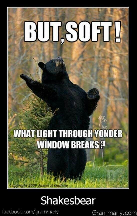 Shakespeare Romeo & Juliet One of my favorite memes
