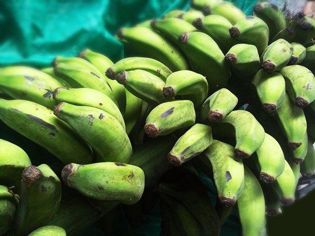 bio14-bananaverde
