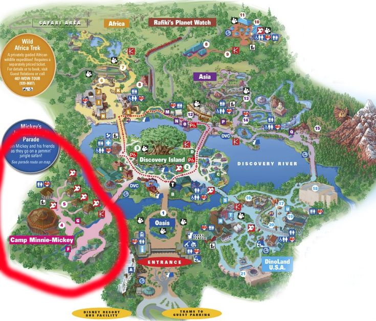 Avatar Land Coming to Disney's Animal Kingdom in 2017 -