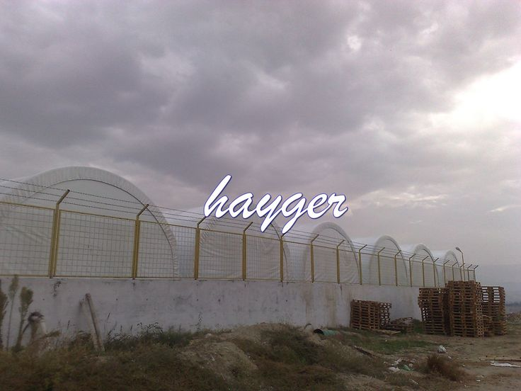 mantar yetiştiriciliği, mantarcılık bölümü ,mantarcılık kursu ,mantarcılık kredisi ,mantarcılık nedir, mantarcılık projesi