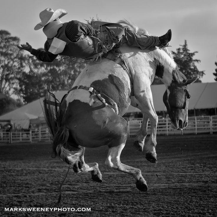 how to start saddle bronc riding