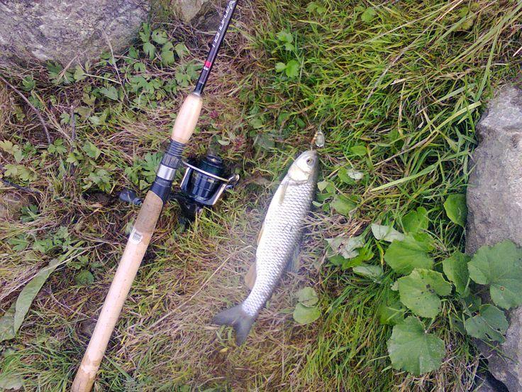 Pescuitul sportiv - mai presus de pasiune: Cleanul şi... nălucile sale