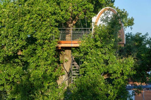 O scara curbata catre casuta din copac Halle din Germania- Inspiratie in amenajarea casei - www.povesteacasei.ro http://bit.ly/1qDUeQp