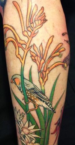 Australian Native plant botanical tattoos