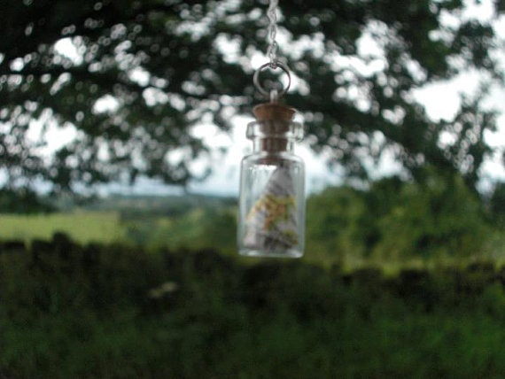 Map in a Bottle Necklace by HandmadeCraftCards on Etsy, £4.00
