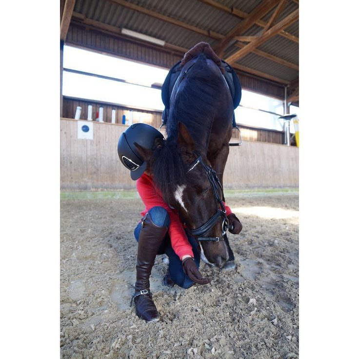 Love my Girl❣️#Dylaras #riderfashion #teamrf #love #happybobbl #happyathlete #equineaccount #lookatmyhorse #kepitalia #superiorhelmets #spooksriding #deniroboots #eskadron #pikeurfashion #roeckl #soulhorse #soulmate #equinelife #horseofig #dressur #dressage #dressurpferd #dressagehorse #seelenpferd #pferdeliebe #pferdemädchen #equestrians #equestrianblogger