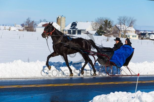 Amish-Man-and-Woman-in-One-Horse-Open-Sleigh-23110 Photo of the Day is Amish Man and Woman in One-Horse  Open Sleigh