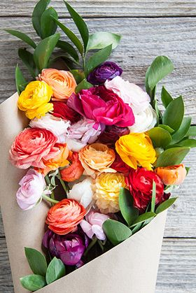 pretty flowers #colorstory