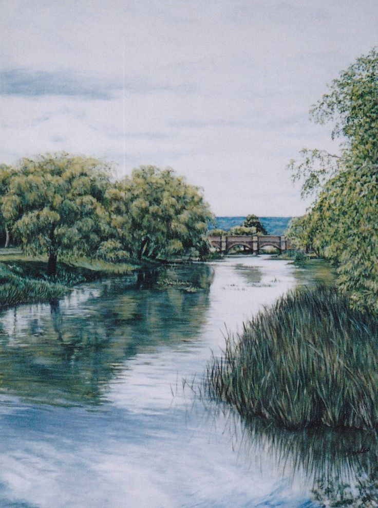 Tasmanian River