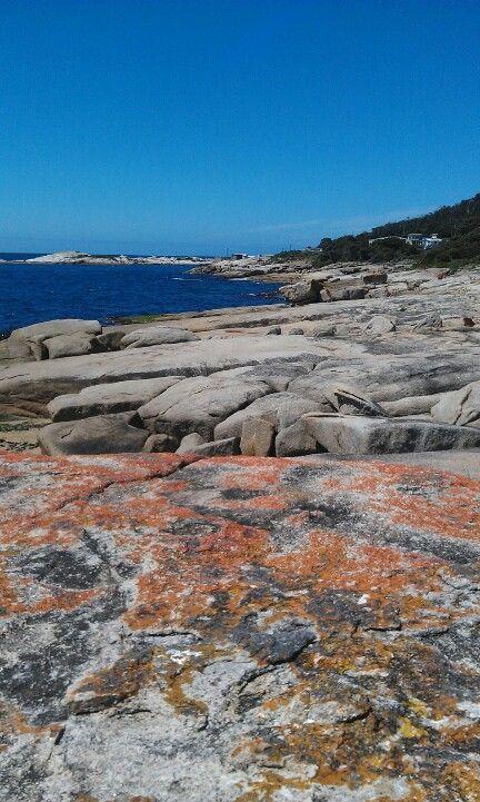 Stunning coastal walk at Bicheno, Tasmania, Australia