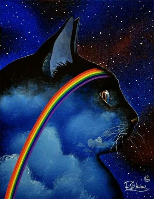 Rainbow Bridge Cat | rainbow bridge | Rainbow bridge cat ...