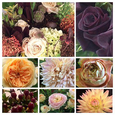 Garden Design Trends 2014 77 best autumn design inspiration images on pinterest | floral