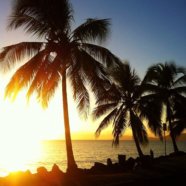 Why FNQ Rocks: the world's most spectacular sunrises. Happy Friday y'all!