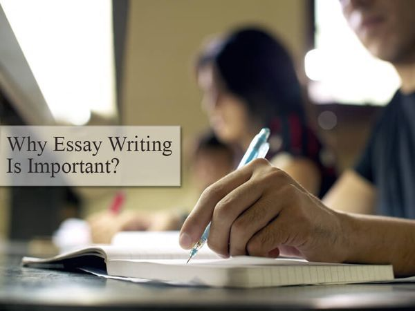 best marvelousessays blog images blog tops and  importance of essay writing · essay writingblog