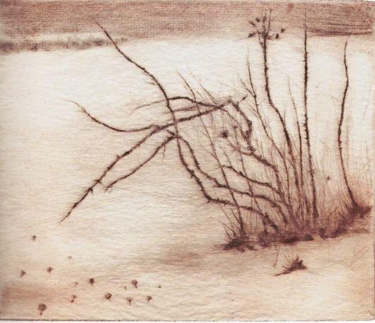 Ostružina a šípek, suchá jehla, papír, 1950