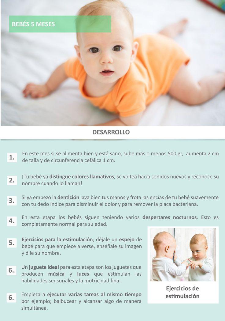 El desarrollo de un bebé a los 5 meses | Mi Embarazo